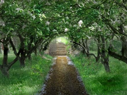 The_Secret_Garden