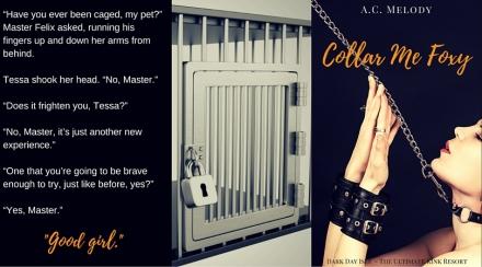 Collar Me Foxy Teaser 2(1)