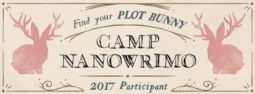 CampNanoBanner