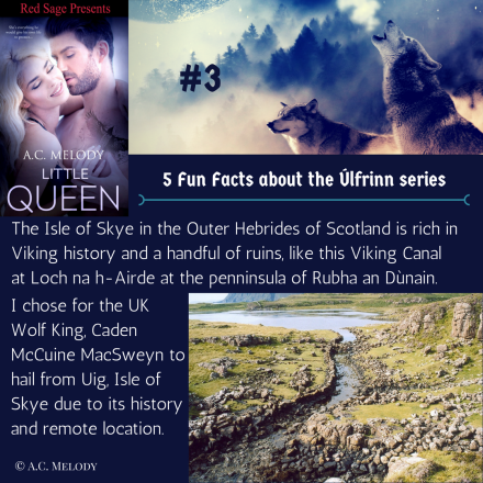 5 Fun Facts - Úlfrinn series #3